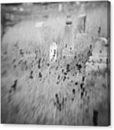 Graveyard 6793 Canvas Print