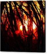 Gravity Inversion At Sunset Canvas Print