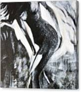Gray Desert Canvas Print