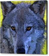 Gray Wolf Portrait Canvas Print