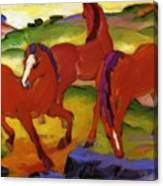 Grazing Horses Iv The Red Horses 1911 Canvas Print