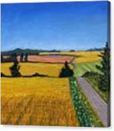 Great Bedwyn Wheat Fields Painting Canvas Print