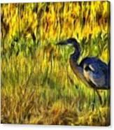 Great Blue Canvas Print
