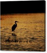 Great Blue Heron Silohuette Canvas Print