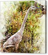 Great Blue Heron W C Canvas Print