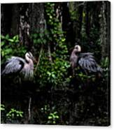 Great Blue Standoff In Watercolor Canvas Print