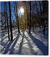 Great Falls Park Virginia After A Winter Blast Canvas Print