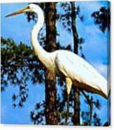 Great Heron Art Canvas Print