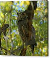 Great Horned Majesty Canvas Print