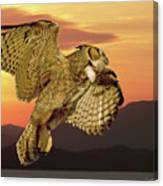Great Horned Owl At Sunrise Canvas Print
