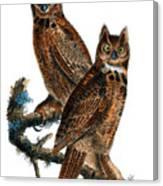 Great Horned Owl Audubon Birds Of America 1st Edition 1840 Royal Octavo Plate 39 Canvas Print