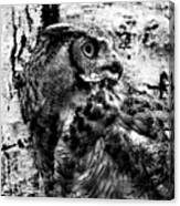 Great Horned Owl In Black And White Canvas Print