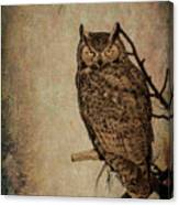 Great Horned Owl With Textures Canvas Print