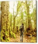 Great Tasmania Short Walks Canvas Print