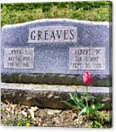 Greaves Canvas Print