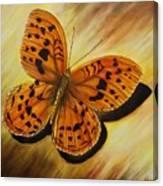 Greek Butterfly Canvas Print
