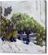 Greek Grapes Canvas Print