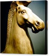 Greek Horse Statue Canvas Print