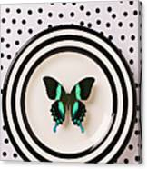 Green And Black Butterfly On Plate Canvas Print