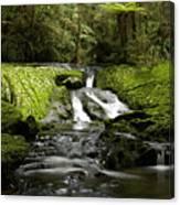 Green Cascade Canvas Print