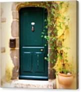 Green Door With Vine Canvas Print