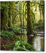 Green Everywhere Canvas Print