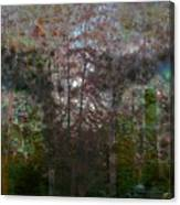 Green Eyes' Reflections Canvas Print