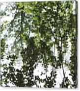 Green Fantasy Canvas Print