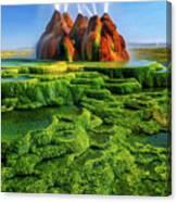 Green Fly Geyser Canvas Print