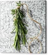 Green Fresh Rosemary On Granite Background Canvas Print