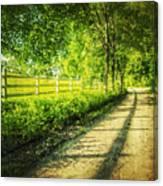 Green Gallop Canvas Print