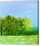Peaceful Summer  Canvas Print