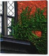 Green Ivy Garnet Brick Canvas Print