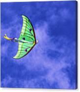 Green Kite Canvas Print
