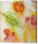 Green Leaf Of Fall Canvas Print