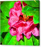 Green Leafs Of Pink Canvas Print