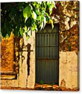 Green Leaves And Wall By Michael Fitzpatrick Canvas Print