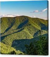 Green Mountainside Canvas Print