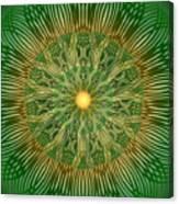 Green No2 Canvas Print