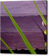 Green On Purple 6 Canvas Print