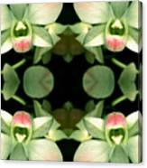 Green Orchid Meeting Canvas Print