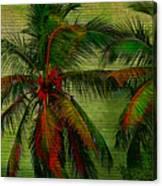 Green Palms Canvas Print