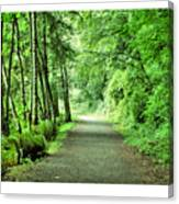 Green Path Canvas Print