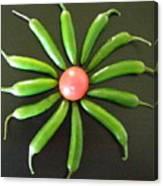 Green Pepper Design Canvas Print