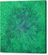 Green Radation With Violet  Canvas Print