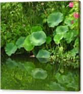 Green Reflection Canvas Print