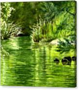 Green Reflections With Sunlit Grass Canvas Print