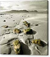 Green Stones On A North Wales Beach Canvas Print