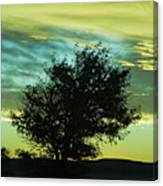 Green Sunset Canvas Print