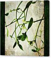 Green Tales  Canvas Print